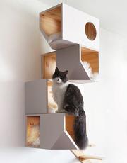 Полки,  домики,  когтечка,  комплексы для кошек