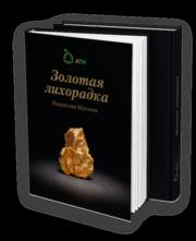 Книга Владислава Мусатова