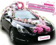 Прокат автомобиля бизнес класса  * Nissan-Teana